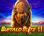 Buffalo Blitz II