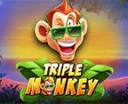 Triple Monkey